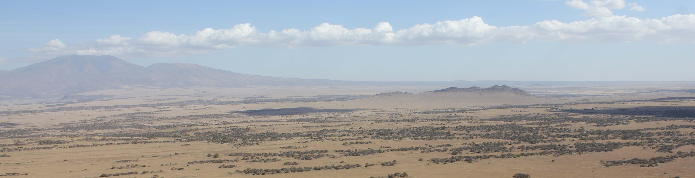 Olduvai Natural Selection Ranking